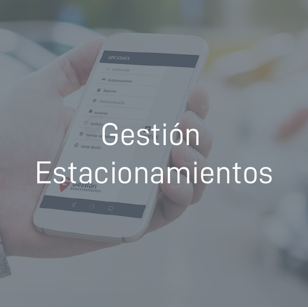Gestion Estacionamientos